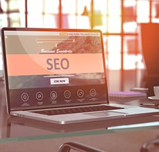 Overall SEO Expertise