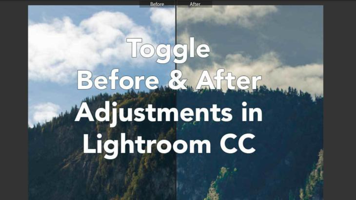 How to toggle between Before & After adjustments in Adobe Lightroom | Mac & Windows | Super Easy! Banner Image