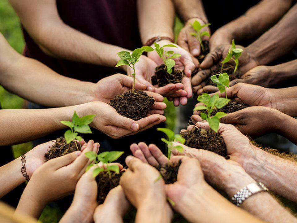 Volunteer opportunities group photo