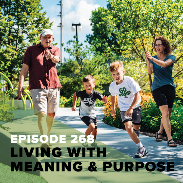 268 meaning purpose tv preview