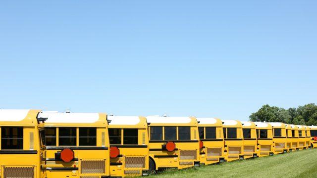 Kerlin bus used bus 1