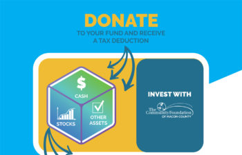 Donor Advised Fund Infographic