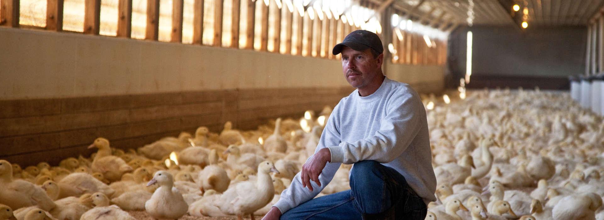 Mike Mast farmer