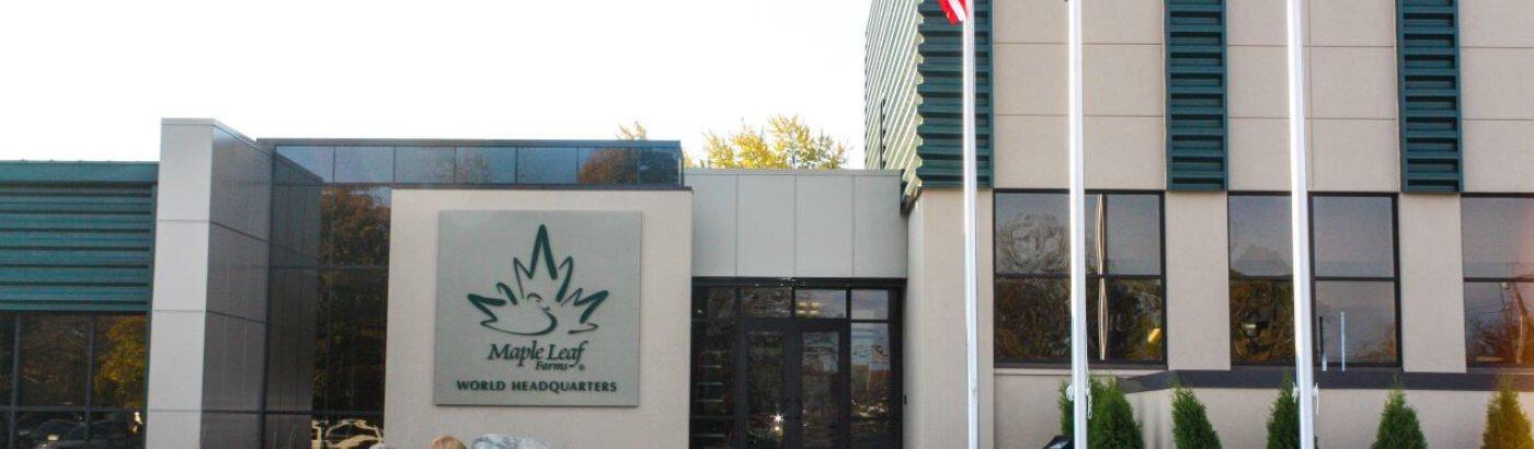 MLF HQ