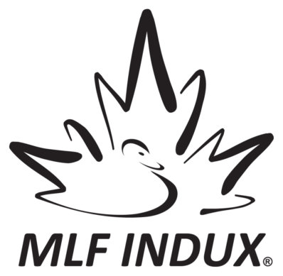 MLF INDUX