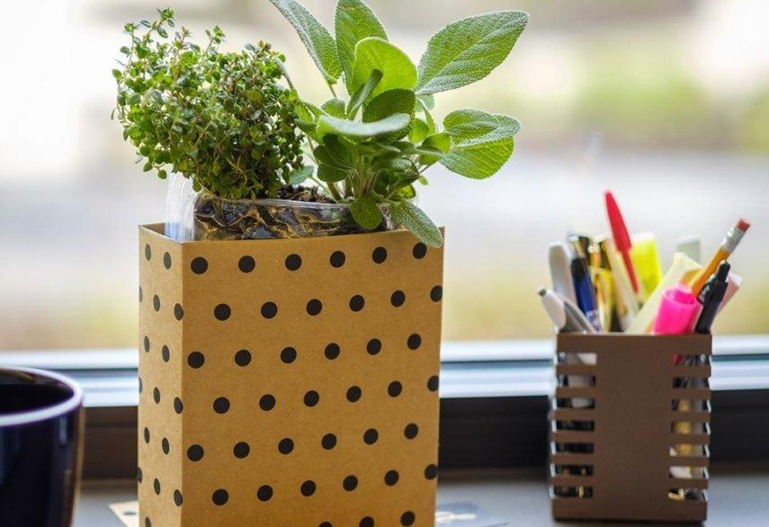 Sandras Herb Garden Upcycle
