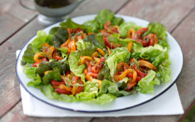 Grilled Pepper Salad