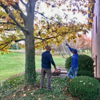 Employees of The ROP Shop and Outdoor Concepts help cleanup the grounds of Gateway Woods, an outreach for people in need.