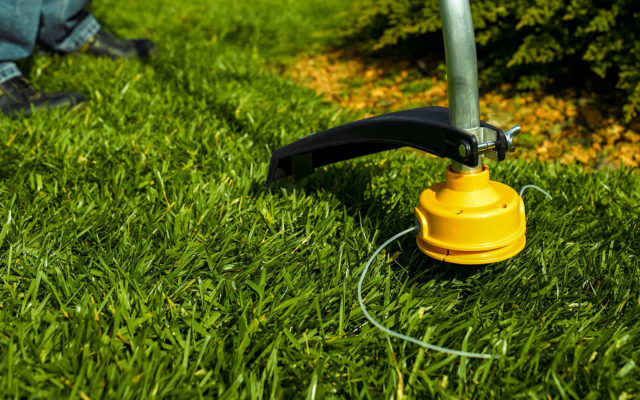 5 TIPS ON HOW TO USE A STRING TRIMMER LIKE A PROFESSIONAL LANDSCAPER