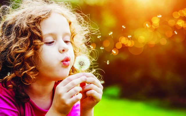 girl blowing on a dandelion