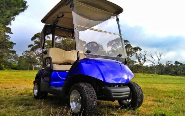 A blue, street legal, golf cart in a grassy field.