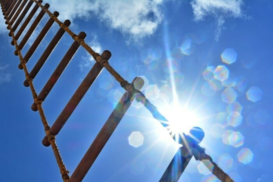 looking up on a ladder under clear blue skies