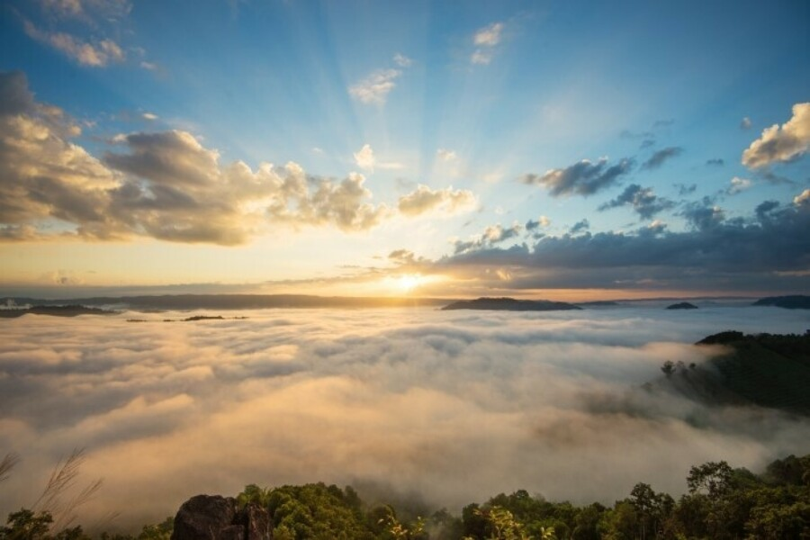 Sun rising above clouds and trees