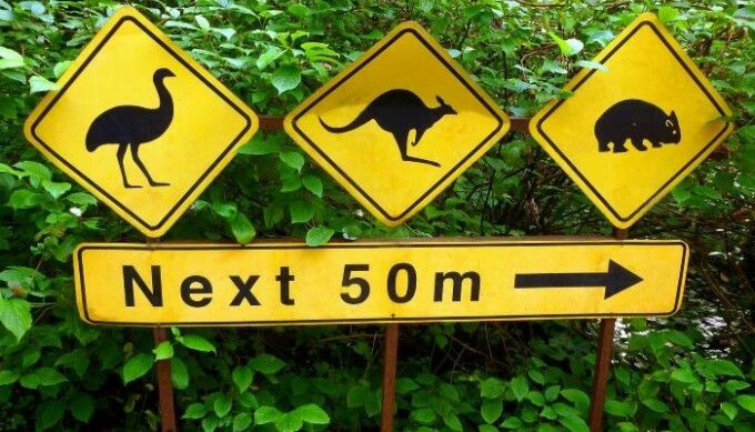 sign indicating Australian animals ahead