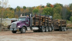 Baillie Lumber truck hauling logs