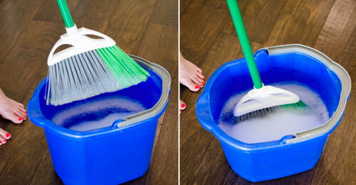 professional apartment cleaning Westminster  21157