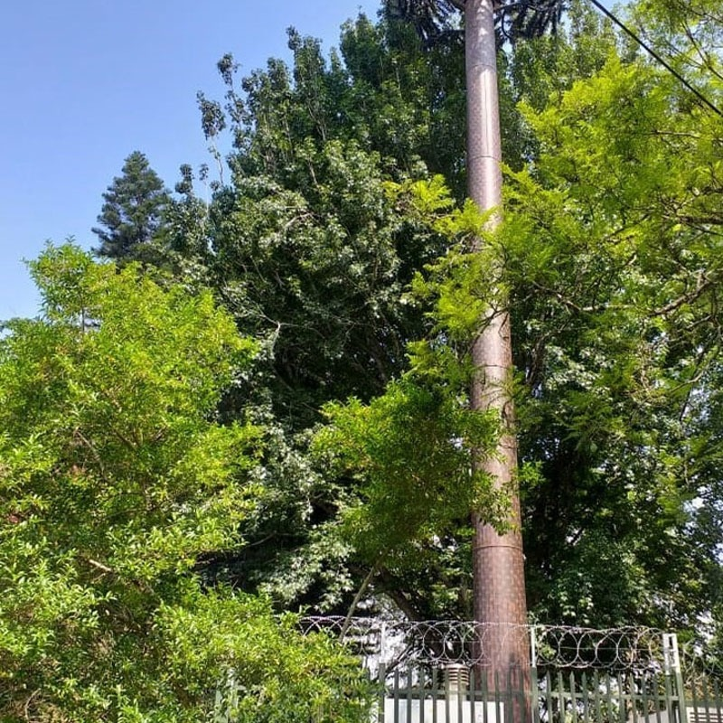 Bladon MTG transforms telecom tower site in Durban