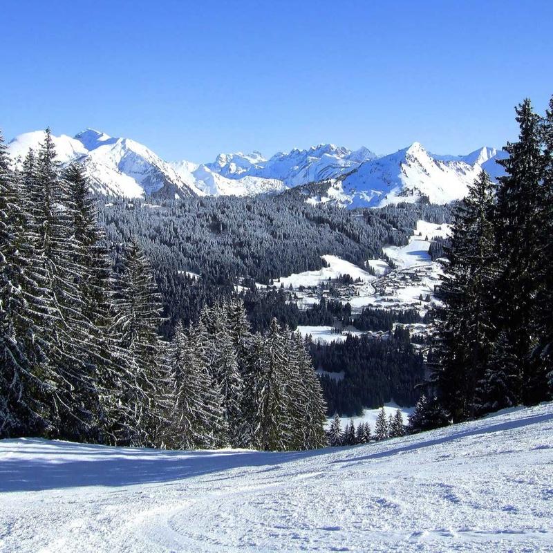 Inter-Livery Ski Championship 2020