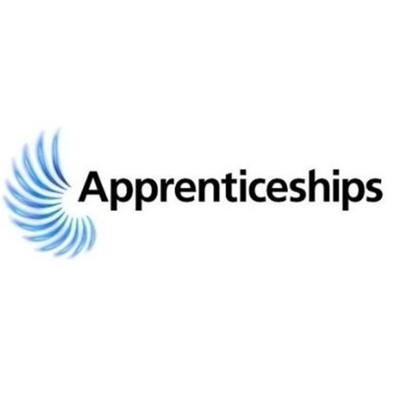 Redundancy Support for Apprentices