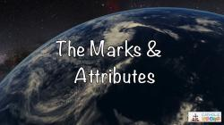 Lesson 12 - The Marks and Attributes of the Church Grade 6-8