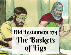 OT 174 - The Baskets of Figs