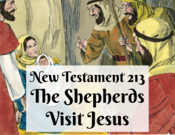 NT 213 - The Shepherds Visit Jesus