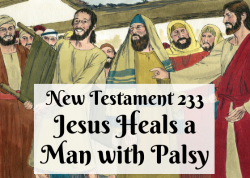 NT 233 - Jesus Heals a Man with Palsy