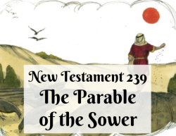 NT 239 - The Parable of the Sower