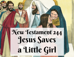 NT 244 - Jesus Saves a Little Girl