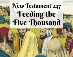 NT 247 - Feeding the Five Thousand