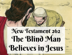 NT 262 - The Blind Man Believes in Jesus