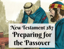 NT 287 - Preparing for the Passover