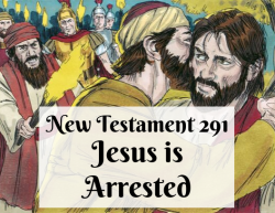 NT 291 - Jesus is Arrested