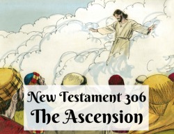 NT 306 - The Ascension