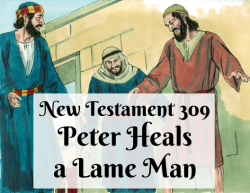 NT 309 - Peter Heals a Lame Man