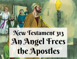 NT 313 - An Angel Frees the Apostles