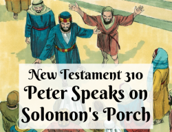 NT 310 - Peter Speaks on Solomon's Porch