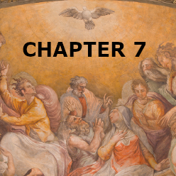 Confirmation - Chapter 7