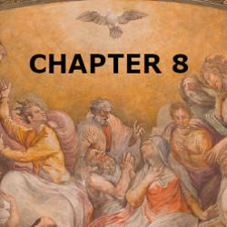 Confirmation - Chapter 8