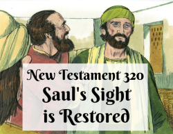 NT 320 - Saul's Sight is Restored