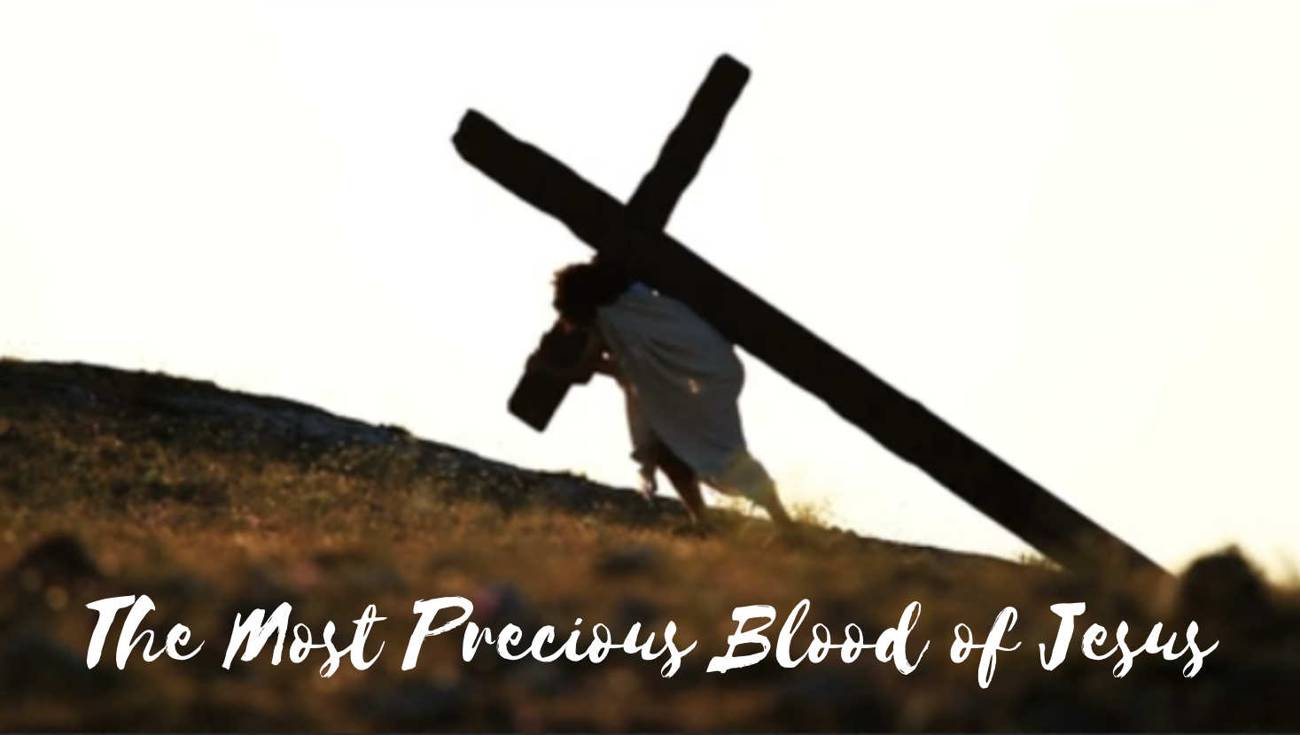 July - The Most Precious Blood of Jesus