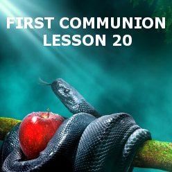 First Communion - Lesson 20 - Sin