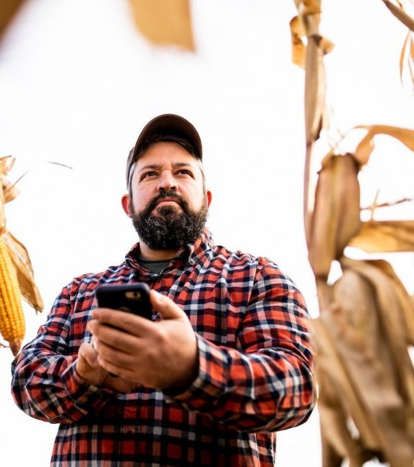farmer in corn field with iphone