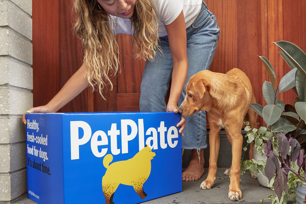 woman picking up petplate delivery from porch with dog