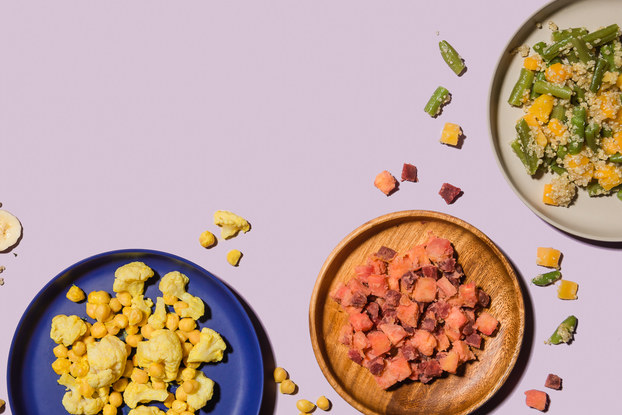 Meals from baby food retailer Raised Real displayed on colorful plates.