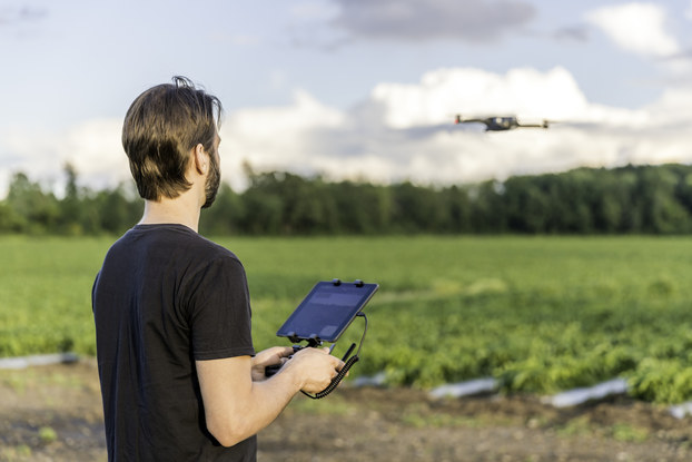 Farmer pilot using drone remote controller at sunset. The field is visible in the background