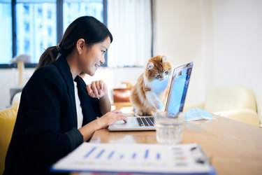 Woman working on laptop with her cat perched next to her.
