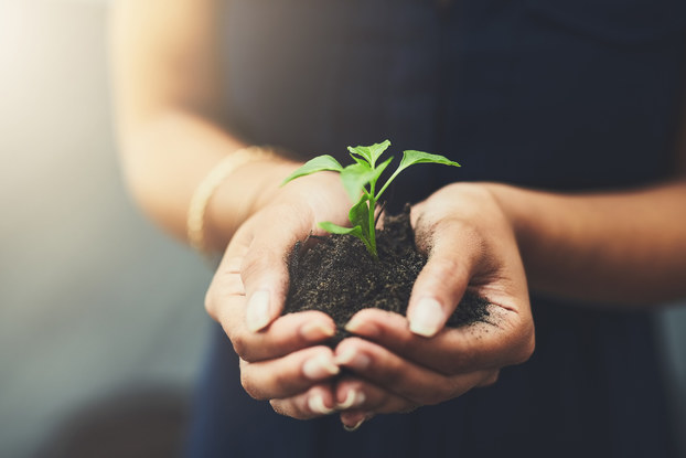 Sustainability is a growing movement.