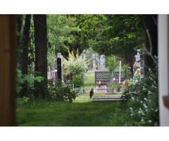 Монастырю Ново-Дивеево  на полный рабочий день  требуется работник на кладбище