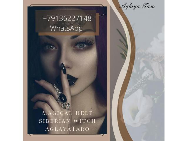 +79136227148